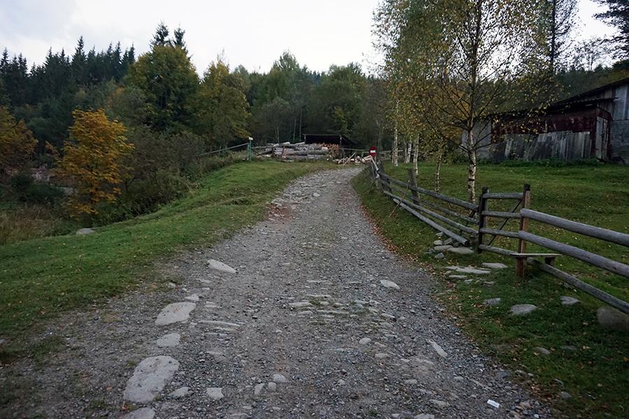 początek podejścia, żółty szlak, droga na Howerle