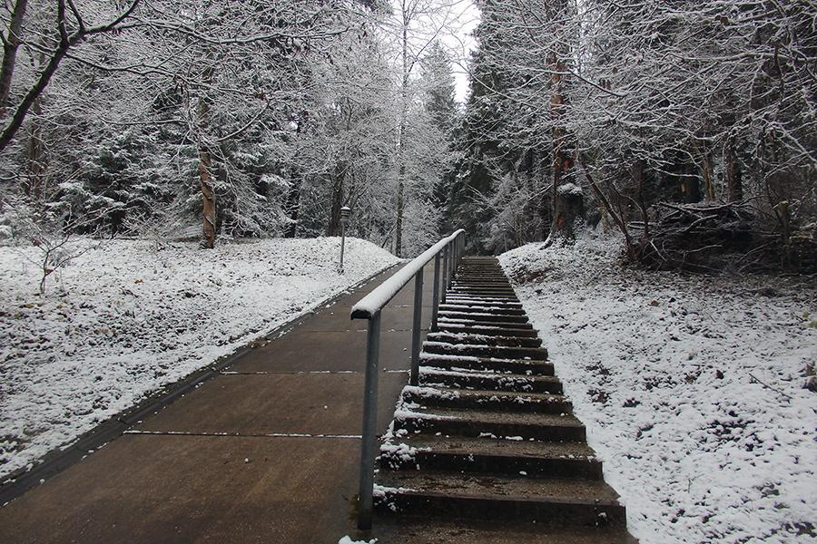 schody na najwyższy szczyt Estonii