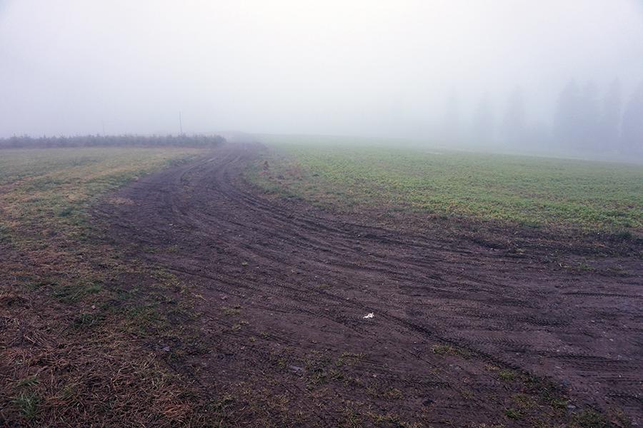 widok z drogi gruntowej (rozgałęzienie) od strony drogi numer 7