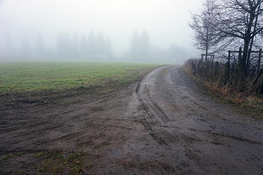 widok na drogę gruntową od strony drogi numer 7