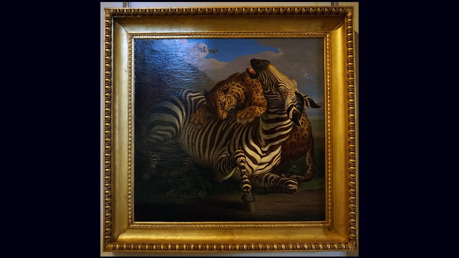 Wenzel Peter - bitwa zebry z leopardem