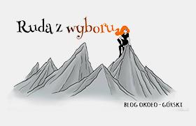 http://www.rudazwyboru.pl/