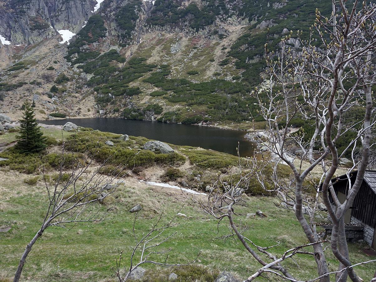 widok na Mały Staw, obok schronisko Samotnia