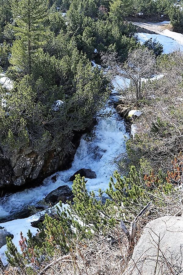 wyjście z lasu, równolegle do ścieżki znajduje się potok górski