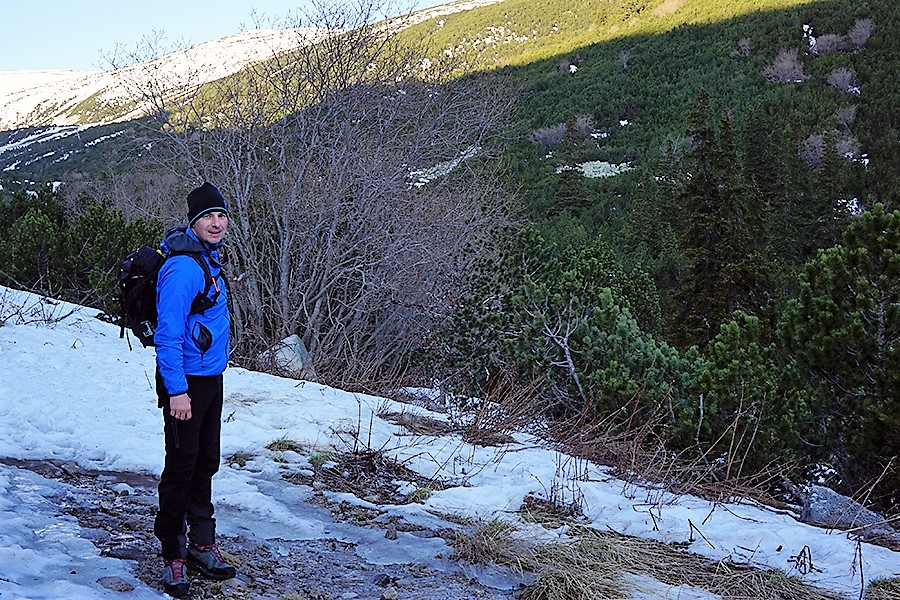 zaśnieżona droga powyżej wyjścia z lasu