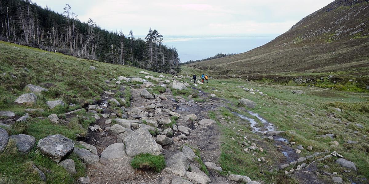 kamienisty szlak na Slieve Donard po wyjściu z lasu