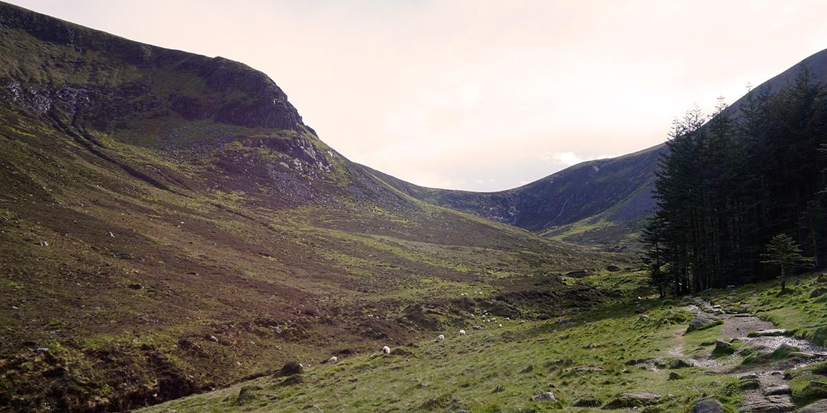 ścieżka prowadząca w dół doliny. W tle siodło ze szlakiem na Slieve Donard