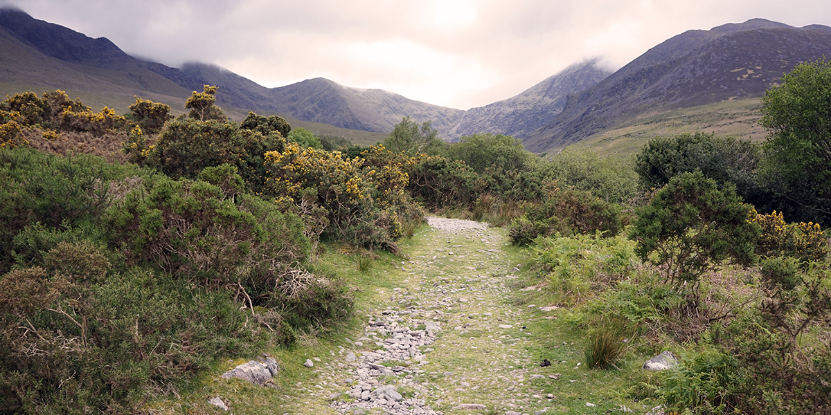 początek drogi na Carrantuohill, kluczenie między zagrodami