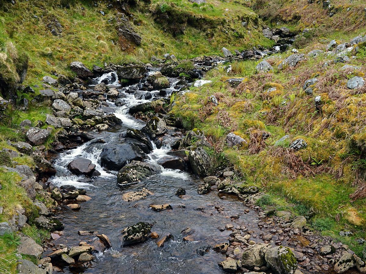 rwący potok w drodze na Carrantuohill